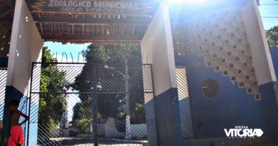 Animais começam a ser removidos do Zoológico Melo Verçosa, em Vitória