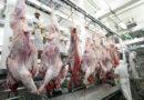 Norma define critérios para o abate humanitário de animais em Pernambuco