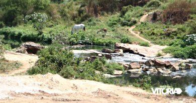 Corpo é encontrado às margens Rio Itapacurá, em Vitória